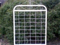 Vanessa garden gate with farm mesh