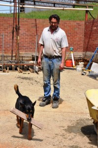 Kelpie helping with site work