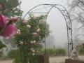 asymmetrical-garden-arch