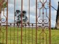 Wrought iron gate bottom detail