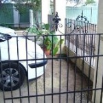 Wrought iron gate and fence panel